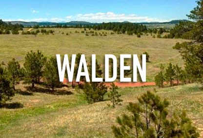 Walden Neighborhood