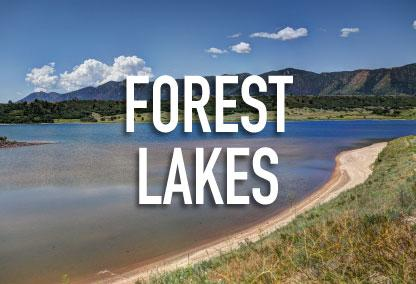 Forest Lakes
